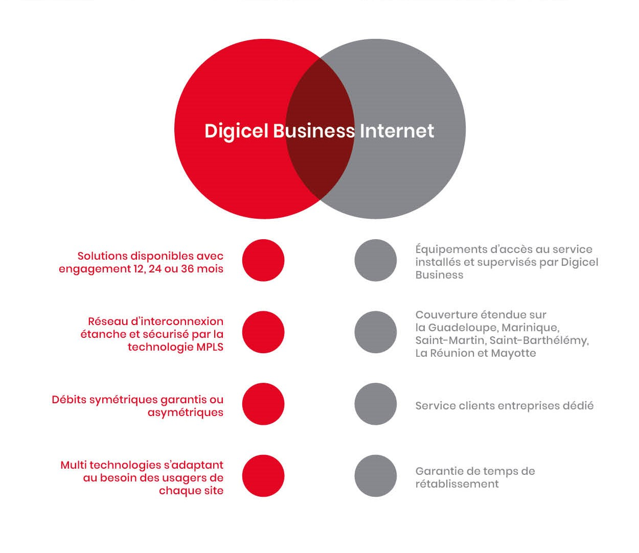 "<h2 style=""font-size:3em;"">Digicel Business IP VPN</h2>"