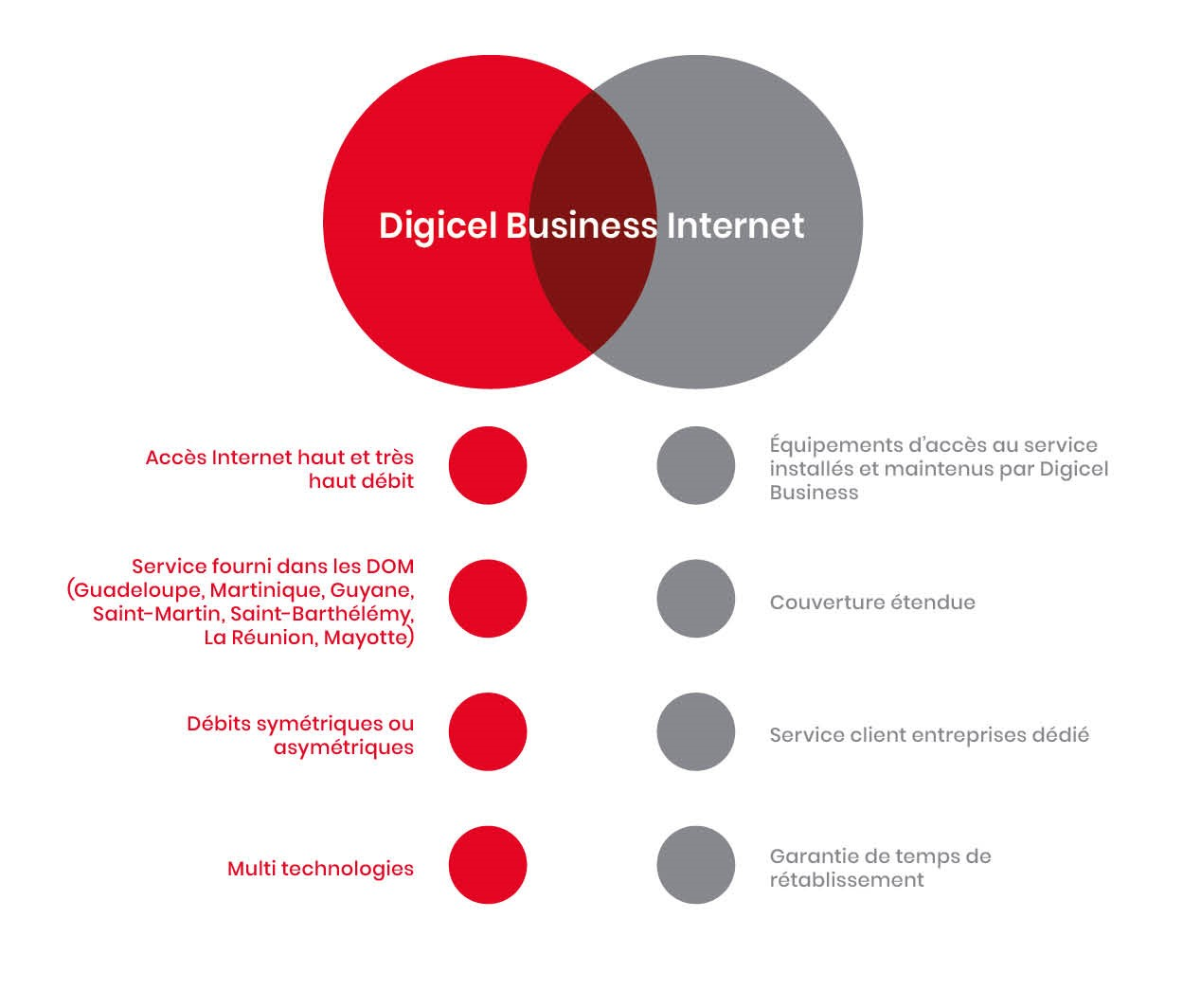 Digicel Business Internet