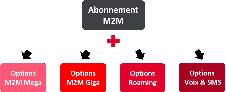"""<p class=""""lead"""" style=""""color:grey;font-weight:bold;"""">Vous devrez ensuite compléter votre Abonnement M2M par une ou plusieurs options en fonction de vos besoins :</p>"""